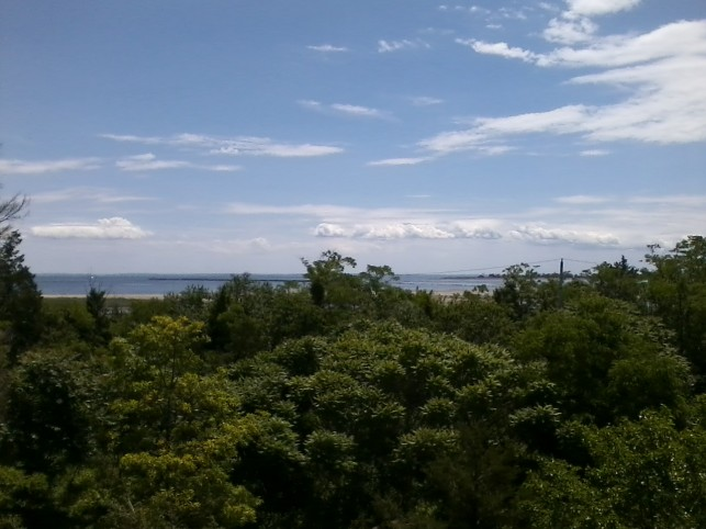 view from Observation Point